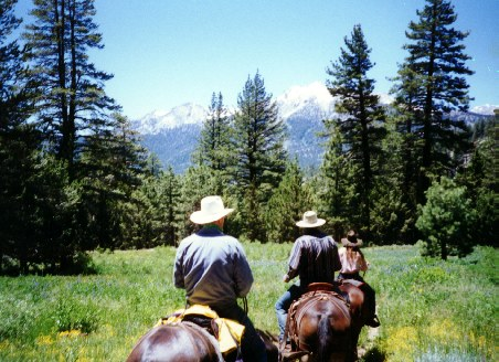 High Sierra Pack Trips Horseback Riding Mule Packing